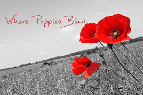 Wher Poppies Blow